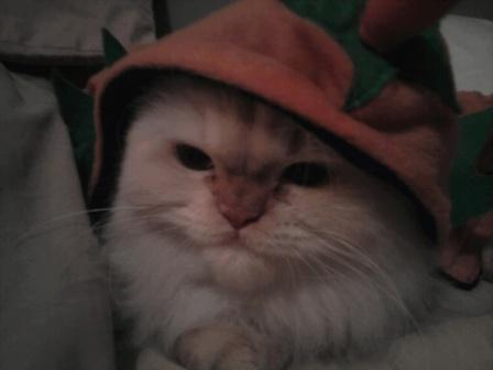 Hannah in her pumpkin hat
